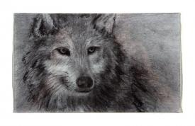 grey wolf drawing by Pam Taggart